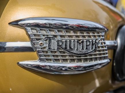 Triumph6-2